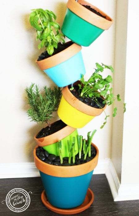 Tipsy Herb Garden Diy Never Skip Brunch