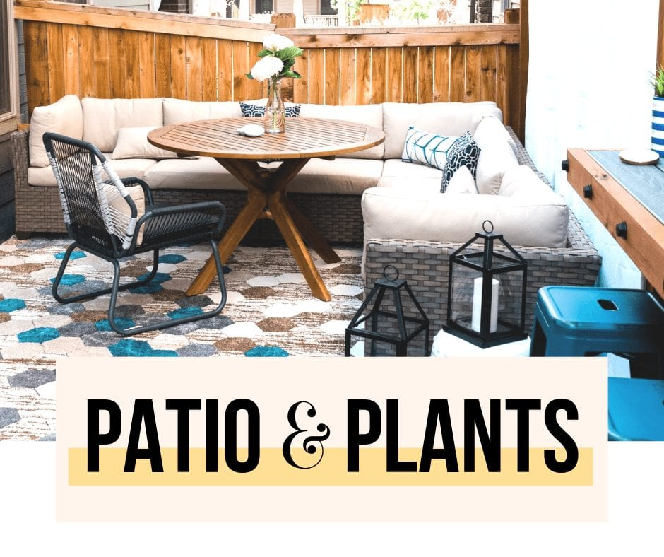 patio & plants