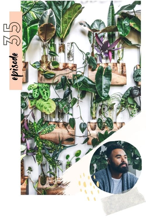 #035: plant styling & the art of bringing plants into your spaces with hilton carter